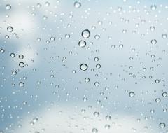 Chouette, il pleut !